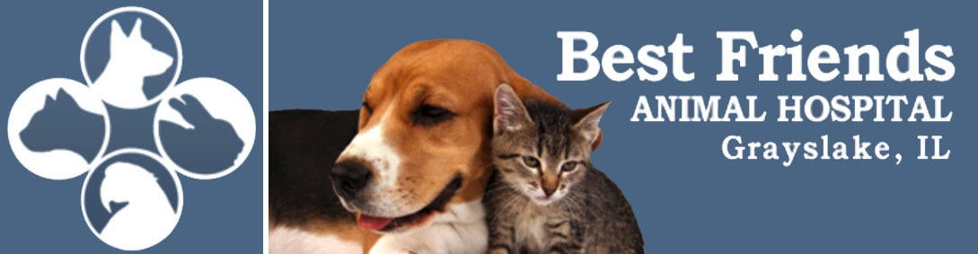 Best Friends Animal Hospital logo